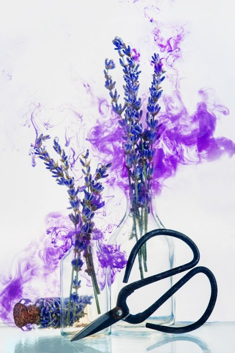 Still life of flowers with paint in water effect