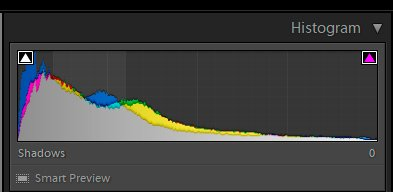 Image of a histogram screen.