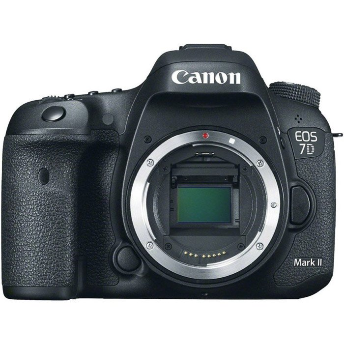 Image of a Canon EOS 7D Mark II camera. Best low light camera.