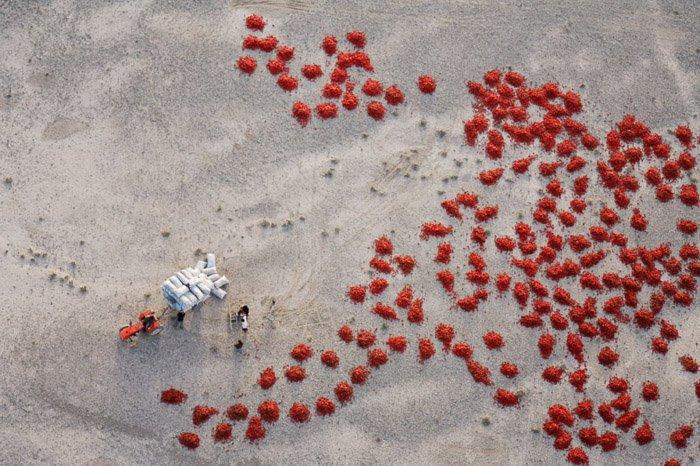 George Steinmetz aerial photo