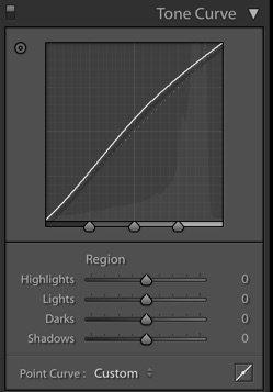 A screenshot of region curve in Lightroom