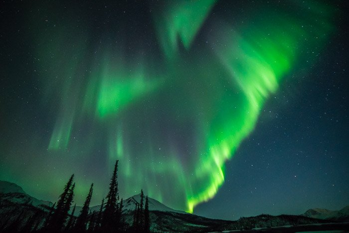 Stunning landscape with northern lights and starry sky above trees and mountain.