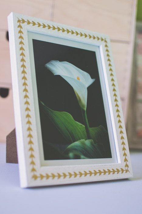A photograph of a white lily in a white frame. Creative photography ideas.