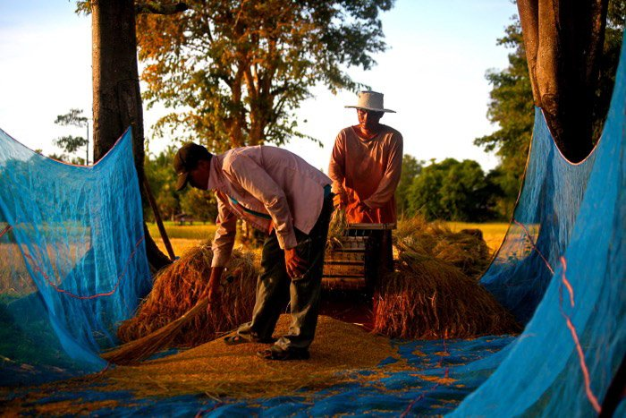 Travel photography of two farmers working in Laos.
