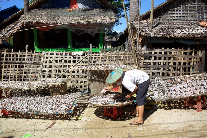 Travel photography of a woman cleaning fish in Myanmar.