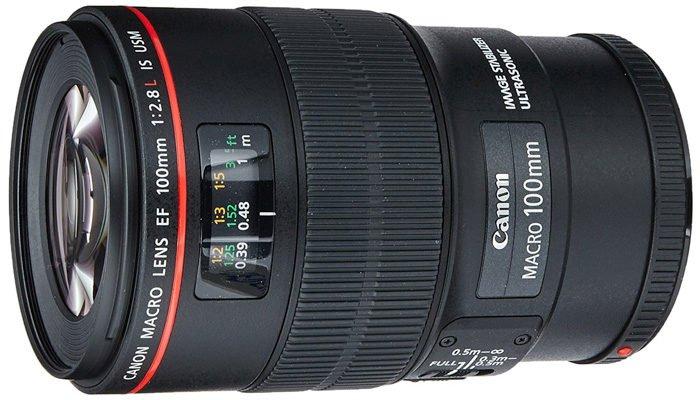 A Canon Macro 100mm lens