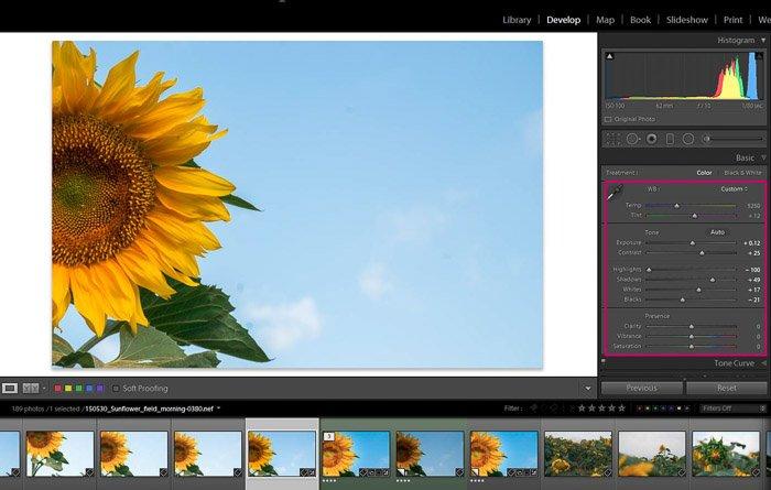 Screenshot of Adobe Lightroom editing flower photography - Lightroom global adjustments panel