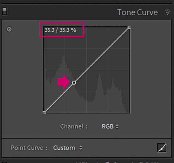 Screenshot of Adobe Lightroom editing flower photography - Lightroom tone curve fix point