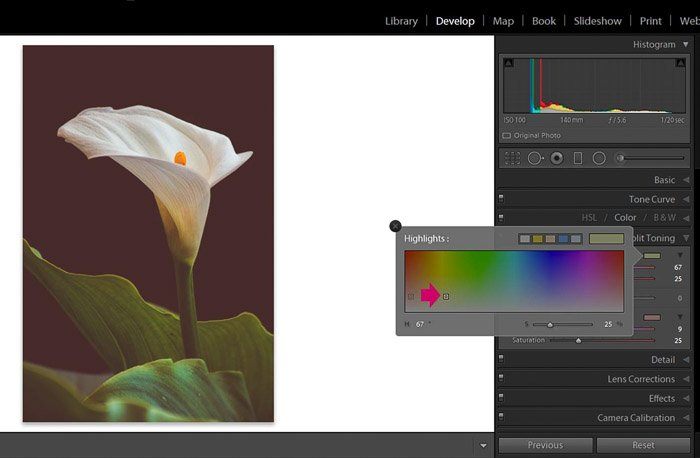 Screenshot of Adobe Lightroom highlighting panel for editing flower photography