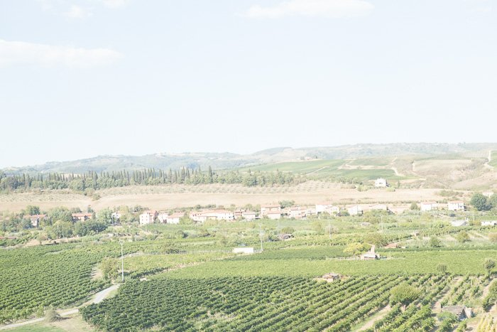 A very over exposed image of the Italian countryside as seen from the train.