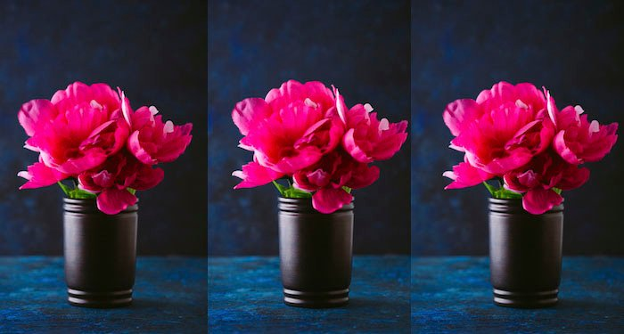 Triptych of a pot of pink flowers shot at varying focus points