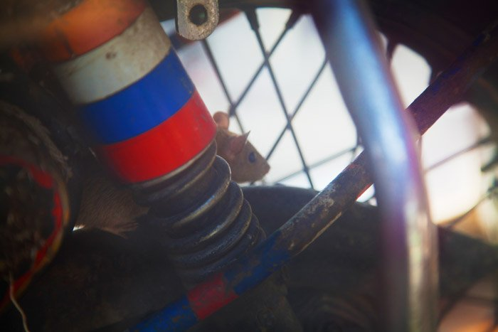 Close up photo of machinery parts. Naturally framing photography.