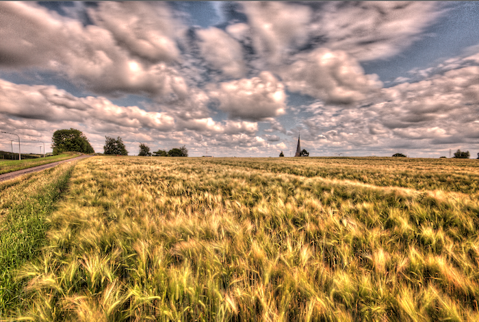 Black puffy clouds on a sunny afternoon over fields. Over processed HDR photography.