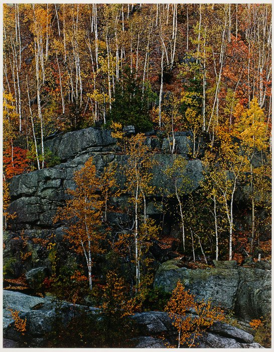Eliot Porter breathtaking landscape shot of rocks surrounded by autumn colored trees