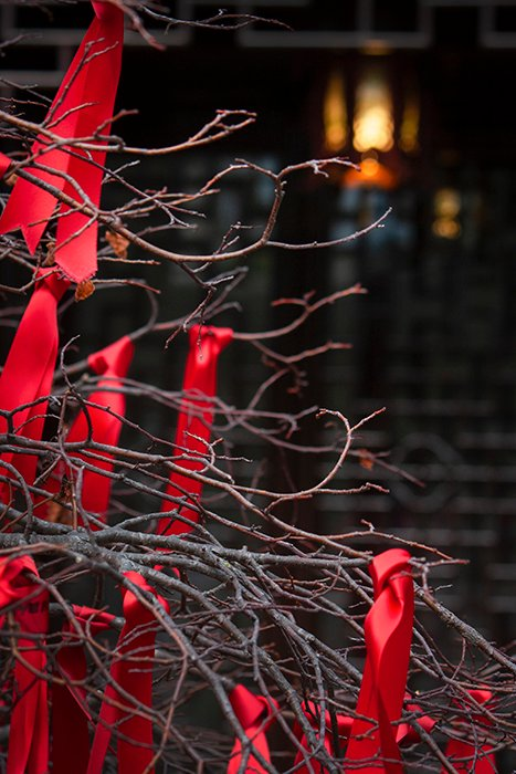 Red ribbons tied to a leafless tree on a dull, grey day.