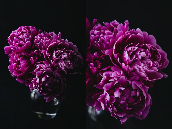 Dark and atmospheric flower photography diptych