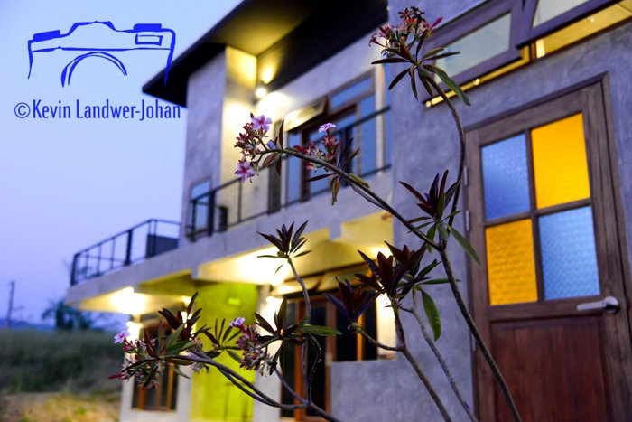 A photo of the exterior of a house with a plant in the foreground and a poorly placed watermark that is too large