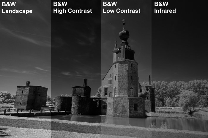 an image divided in 4 to show the Comparison between some B&W presets on an infrared image.