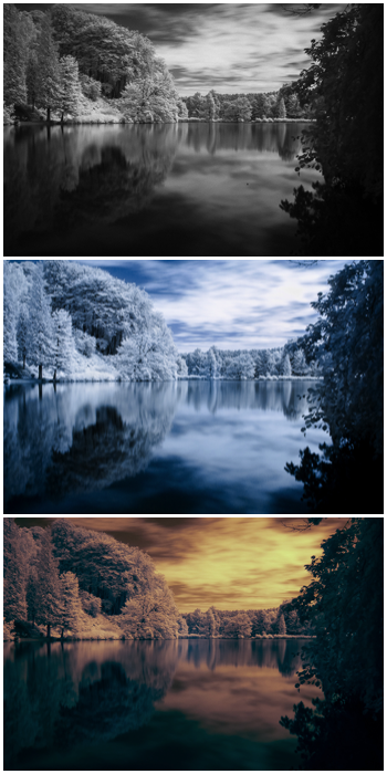 Triptych showing the same photo with three different styles of infrared photography editing