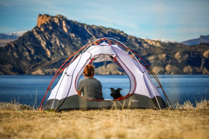 Sweet and serene shot of a woman and dog in a tent looking towards the seascape and mountains ahead