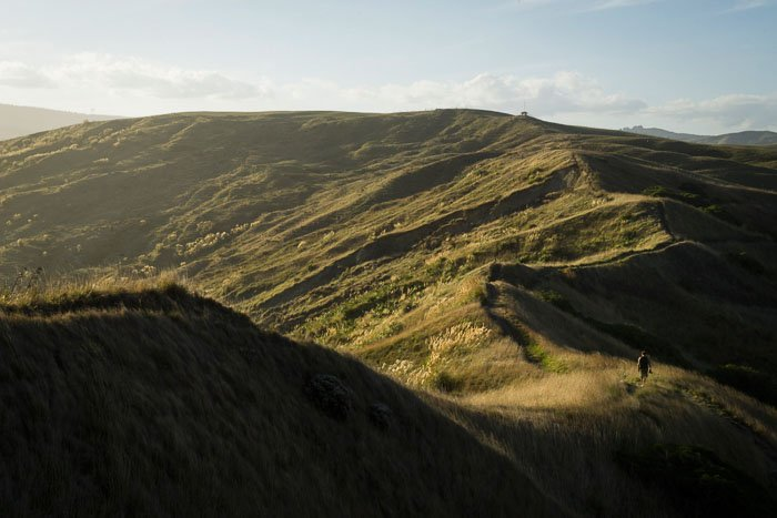 A person walking through a grassy hilly landscape near sunset for road trip photography