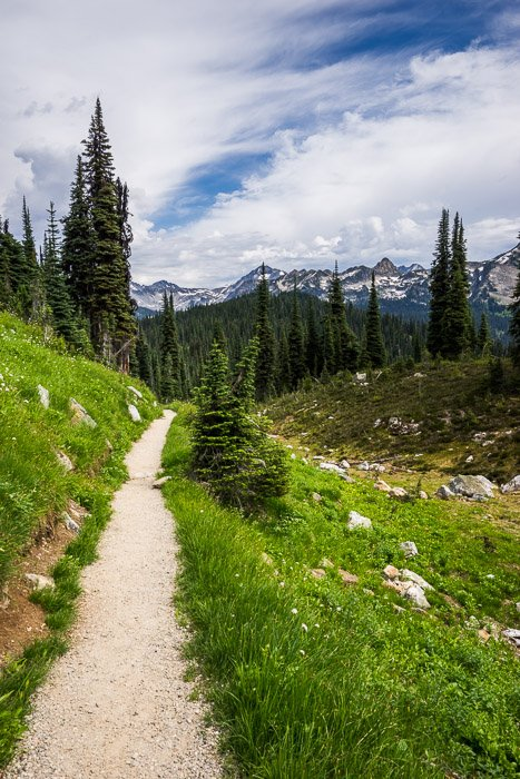 A hiking path through a grassy landscape with mountains in the background
