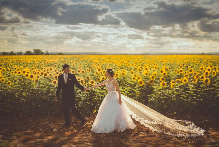 Beautiful wedding photography of the bride and groom holding hands in front of a sunflower field