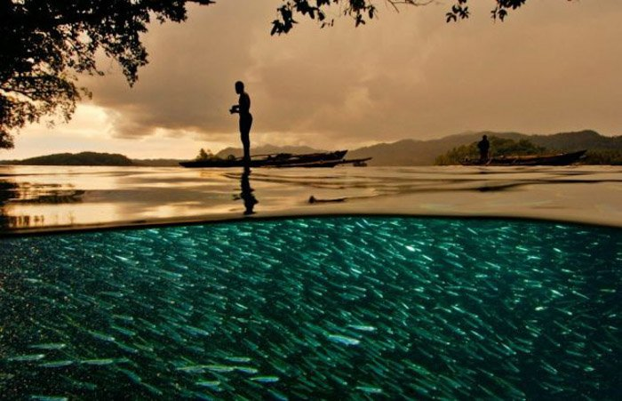 A person standing beside a turquoise pool full of fish in golden evening light, shot with a wide angle lens.