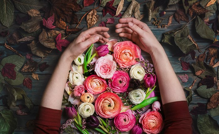 Cosy autumn flat lay photo of a persons arms gathering colored flowers on a wooden background