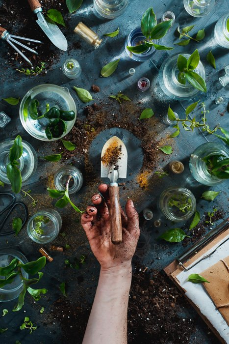 A gardening themed still life with plants in glass jars and a hand holding an earth covered trowel