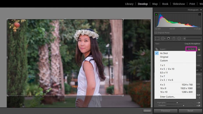using lightroom to change aspect ration of photo of woman in a white dress and flower crown
