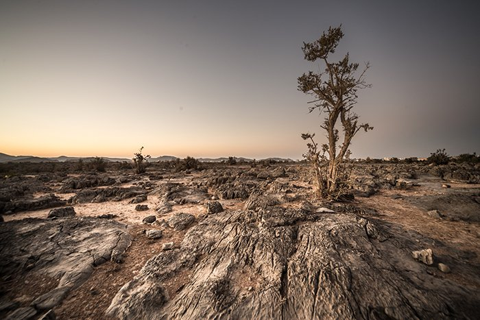 A barren and rocky landscape at sunset
