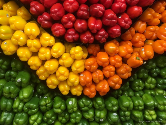 Many green, yellow, red and orange peppers arranged by colour