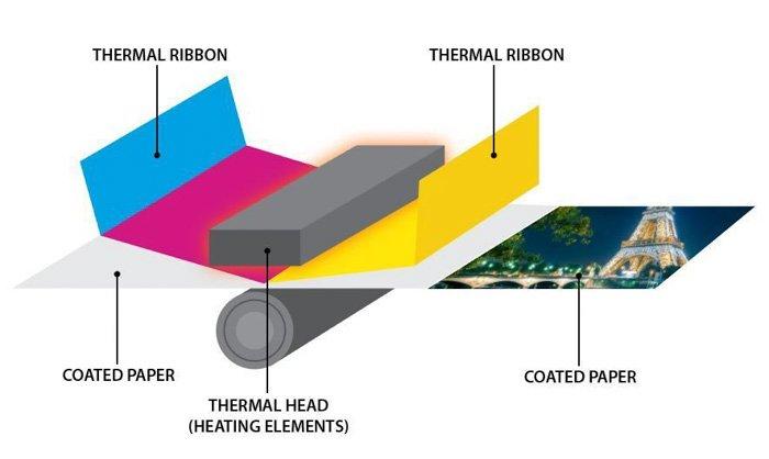 diagram of thermal printer
