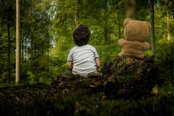 A little boy and a teddy bear in aforest taken with a Sony RX100 Mk II. professional camera