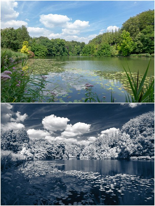 Comparison between the same landscape seen with visible (top) and infrared light (bottom).