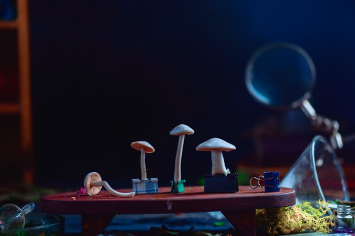 Small mushrooms clipped onto a tiny red table for a still life smoke photography shoot