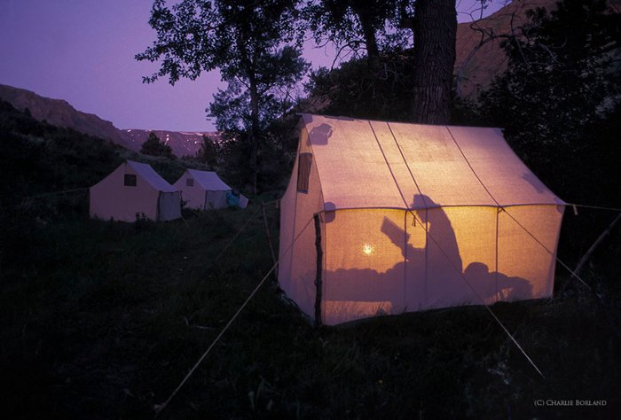 camper reading a book silhouetted in a tent lit by lamplight in the woods, against a purple dusk sky