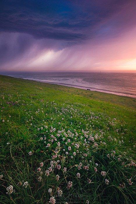 Lucious coastal landscape at evening time