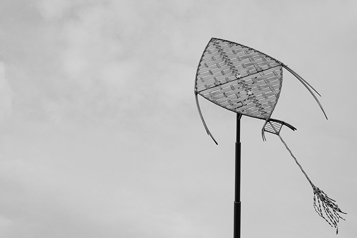monochrome image of a kite against a cloudy sky - best camera settings for black and white