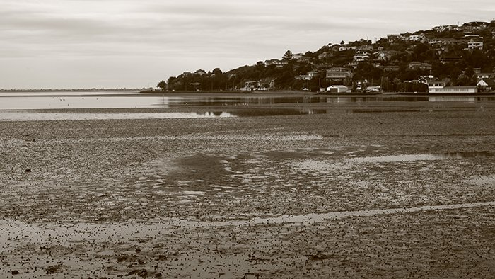 A sepia shot of an estuary - best camera settings for black and white photography