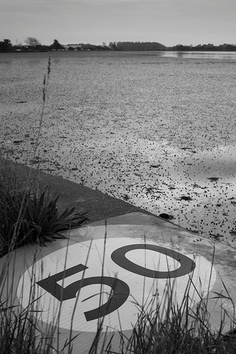 The tired road sign with a red filter applied and increased sharpness and contrast in monochrome in-camera settings. 50mm, ISO100, 1/320sec, F/9.