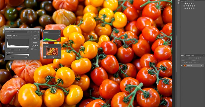 editing a photo of a pile of golden orange and red tomatoes