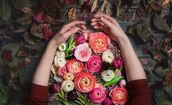 arms caressing a bunch of brightly coloured flowers on a wood table