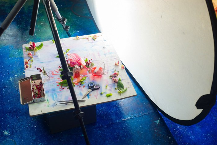 reflector and tripod set up. flatlay arranged on white photo background surface, several pink petals and green leaves