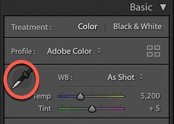 screenshot of using white balance function on Lightroom for product photo editing