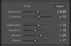 screenshot of adjusting the tone of an image on Lightroom for editing product photography