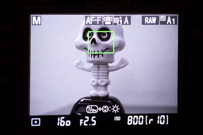 Close up of adjusting autofocus modes on a camera while focusing on a plastic figure of a skeleton