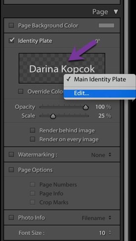 Screenshot of creating a contact sheet in Lightroom