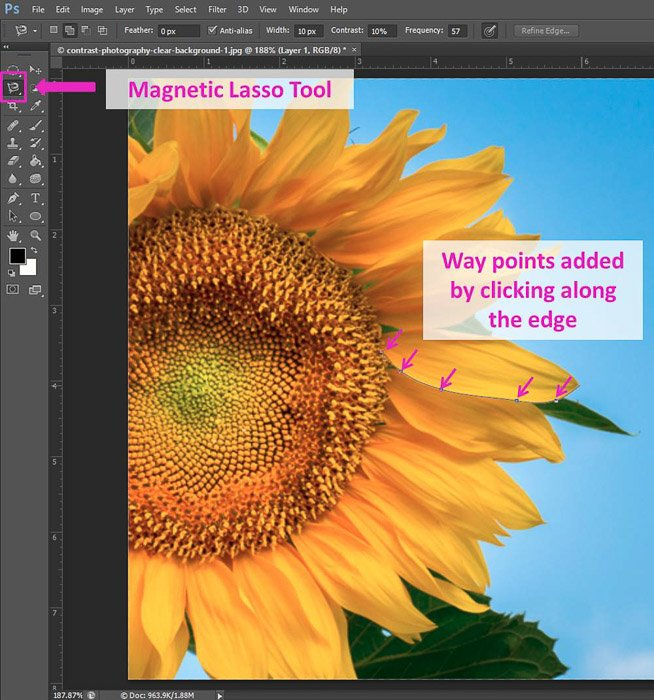 Screenshot of using the Magnetic Lasso Tool Photoshop shortcuts